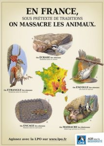 Image-Actualités_Chasse001